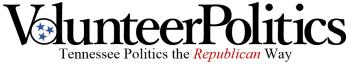 volunteer-politics-blog-small1