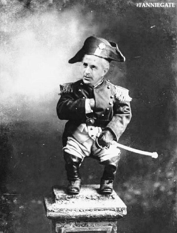 Bonaparte Bob